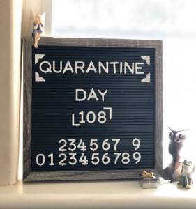 quarantine count3